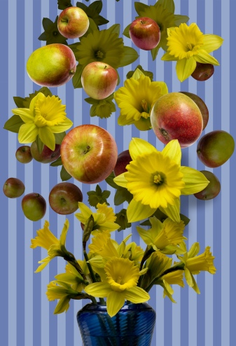 Apples_Daffodils_Vase2 SPRING