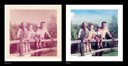 Before After - Fence
